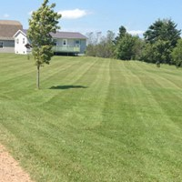 McIsaac Lawncare and Landscaping Ltd residentail grass cutting