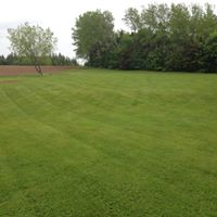 commercial grass cutting